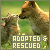 Animals: Adopted & Rescued