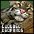 Big Cats: Clouded Leopard