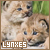 Big Cats: Lynxes