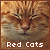 Cats: Red Cats