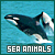 Animals: Sea