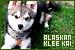 Dogs: Alaskan Klee Kai