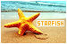 Aquatic: Starfish